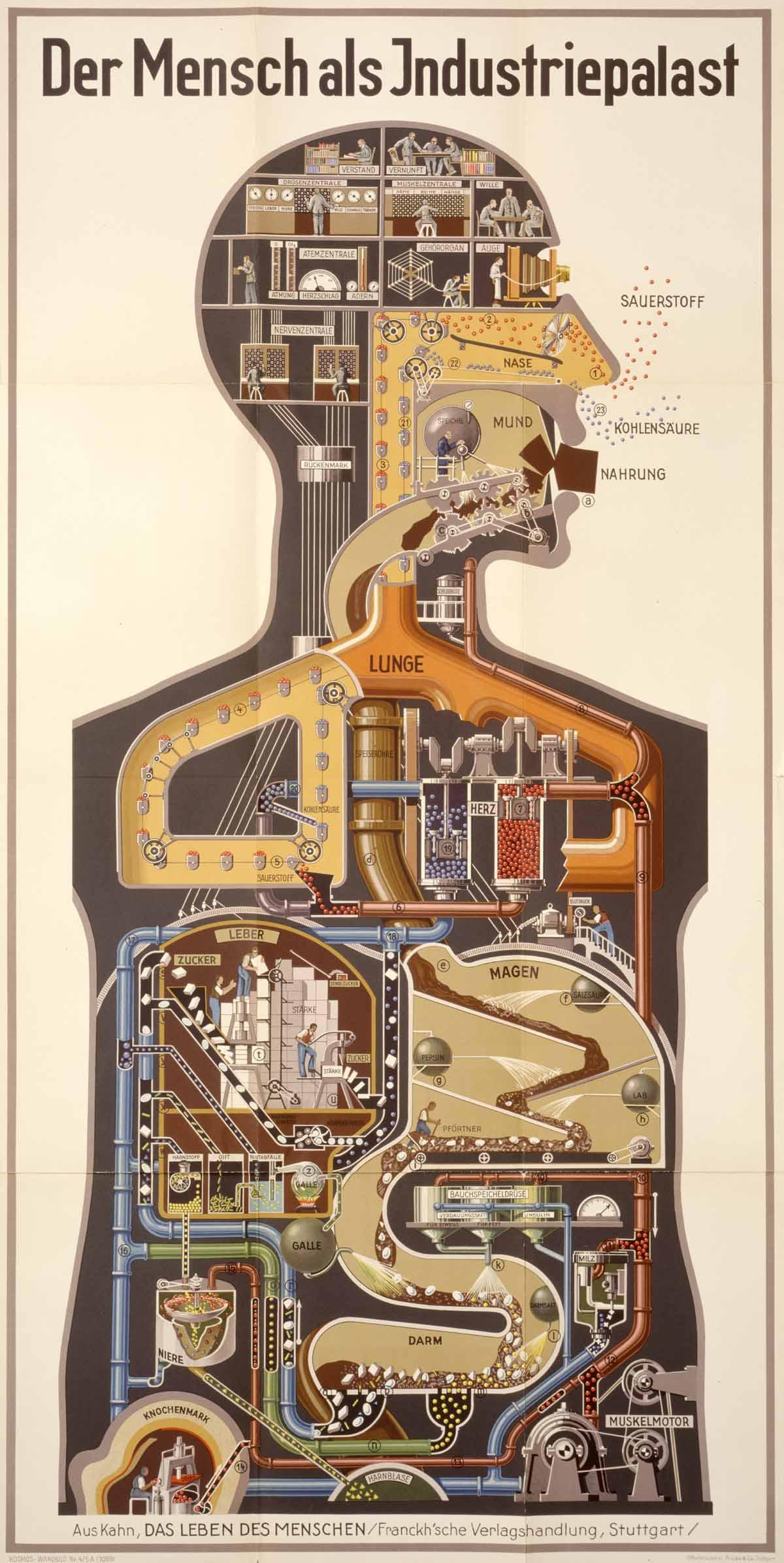 steam engine process essay